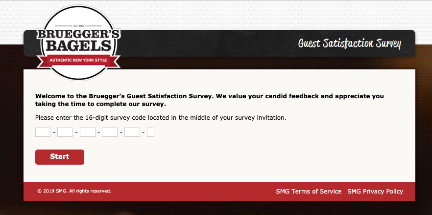 bruegger survey