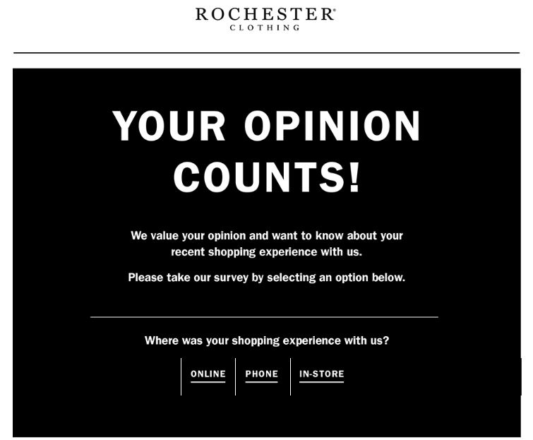 Rochester Survey homepage